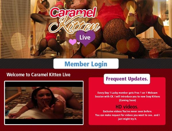 Caramel Kitten Live Stolen Password